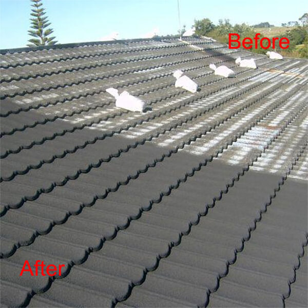 Auckland Roof Painting And Repair Get A Massive 33