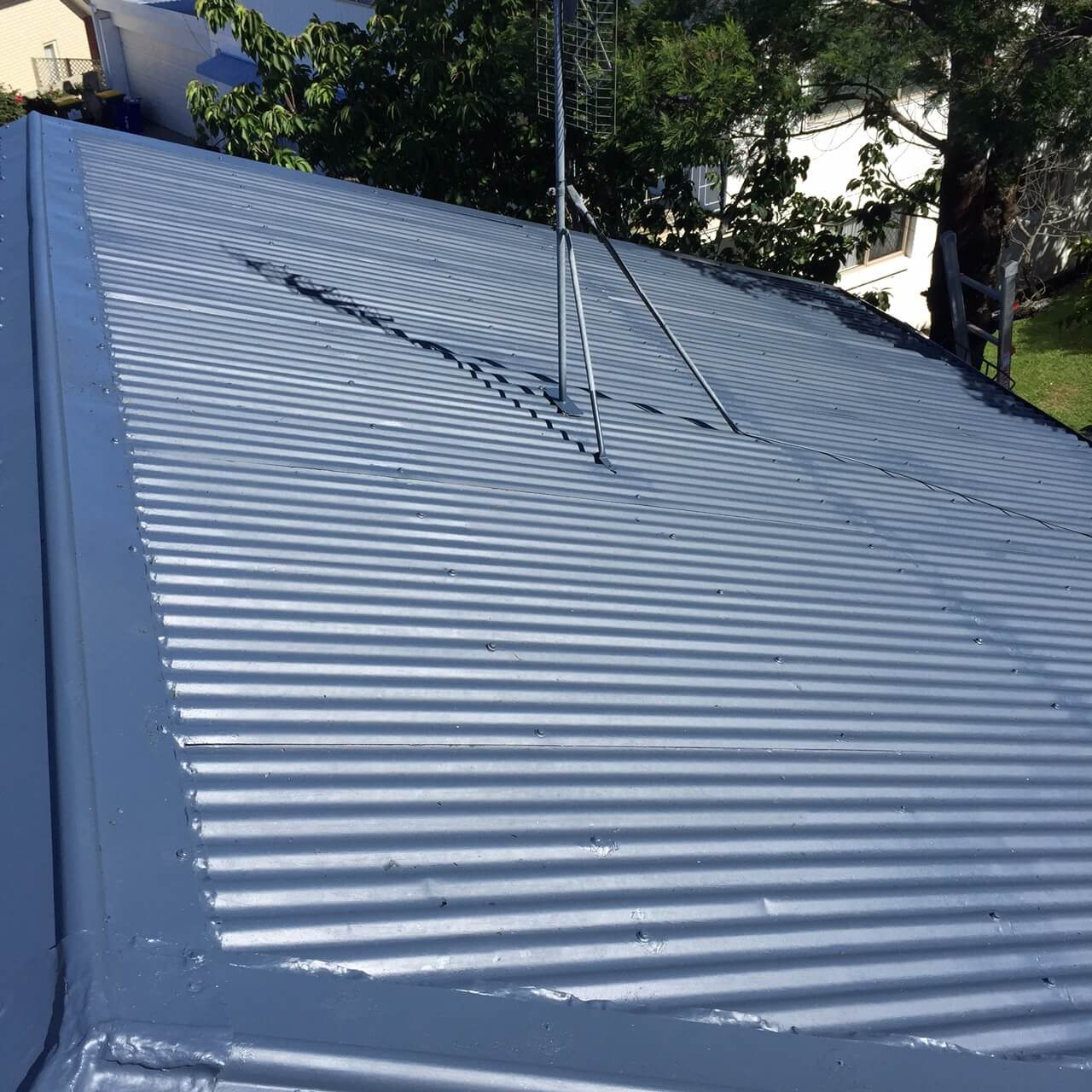 West Auckland Roof Painting 5 Star Roof Painting Auckland